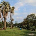 imatge típica del Parc de la Ciutadella