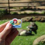 imant Zoo Barcelona