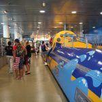 interior Aquàrium Barcelona