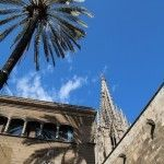 palmera i Catedral Barcelona