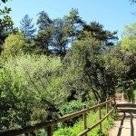 sendera jardí botànic històric