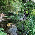 jardí Edifici Històric de la UB