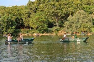 barques llac de la Ciutadella