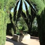 vegetació Jardins Laribal
