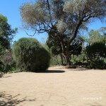 esplanada jardí botànic històric