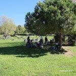 Picnic Jardins Joan Brossa