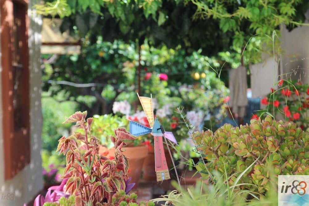 jardí Carrer d'Aiguafreda